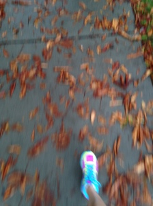 I love the sound of leaves underneath sneakers.  No, I was not running when taking this (cool down walk)!