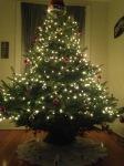 2014 Tree