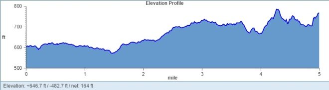 Turkey Trot Elevation